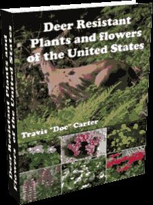 Deer Resistant Plants EBook
